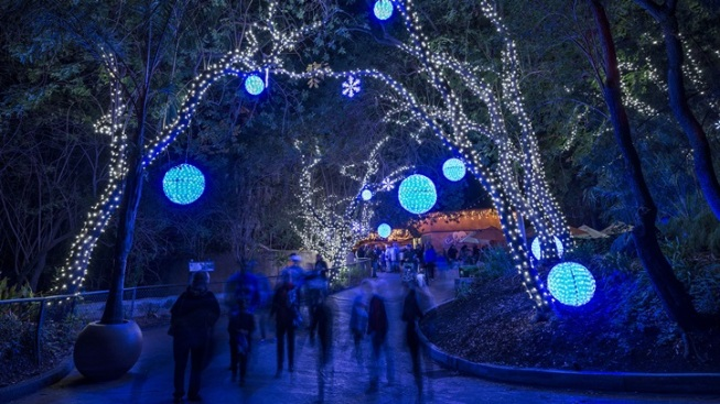 Illuminated Animals: LA Zoo Lights Returns