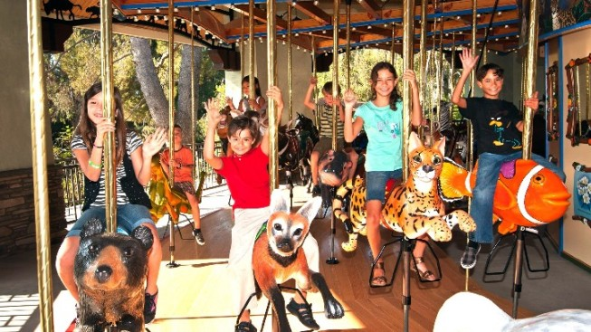 A Carousel with a Cause
