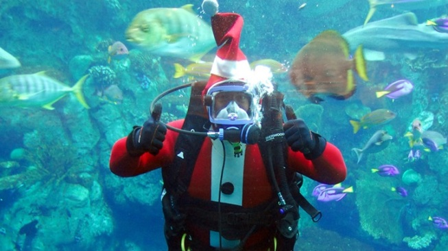 Santa Diver Visits Long Beach