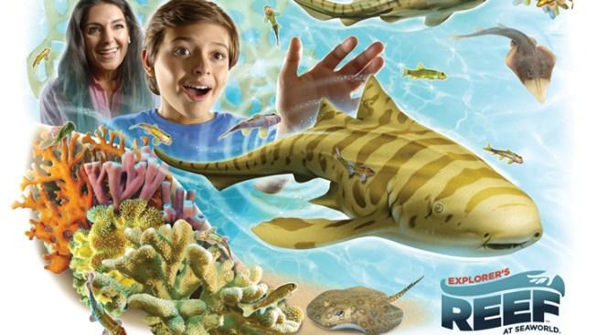 SeaWorld San Diego Opens Explorer's Reef