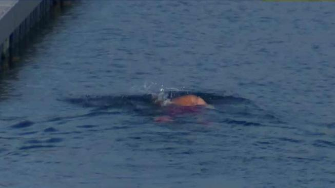 girl remains missing after falling into deep calif reservoir nbc