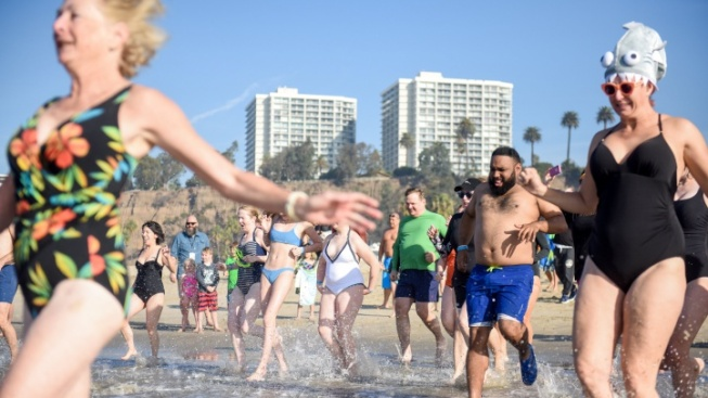 Polar Bear Swimmers, Be Cold, er, Bold and Sign Up