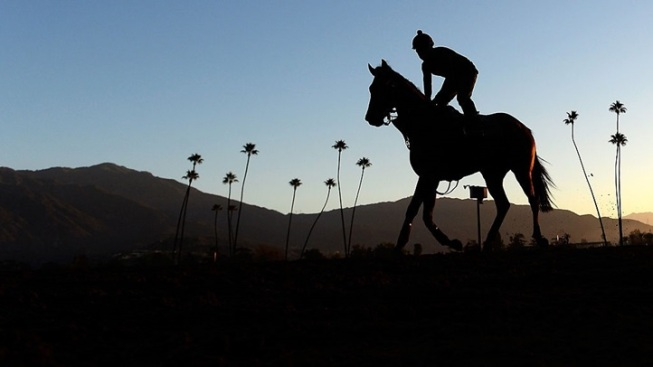Weekend: Breeders' Cup