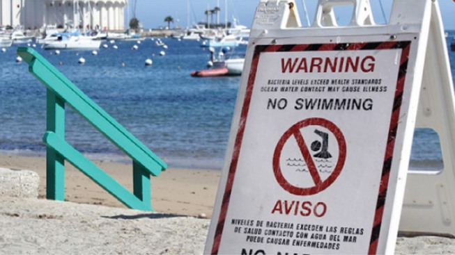 7 of 10 Dirtiest California Beaches Are in Los Angeles County