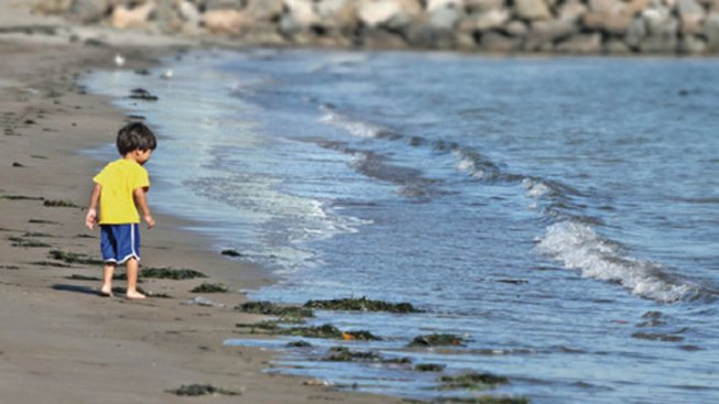 Report: California Beach Water Quality Improving