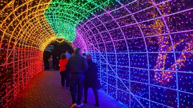5 Must-See Holiday Light Displays in LA