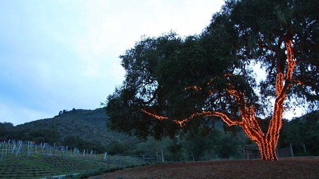 Rustic Seasonal: Carmel Valley Ranch Holiday