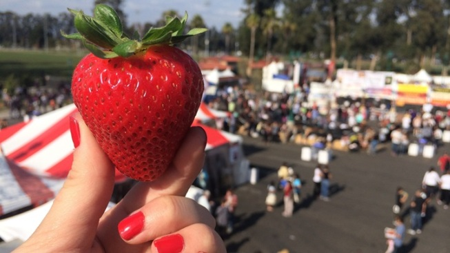 California Strawberry Festival Poster Contest