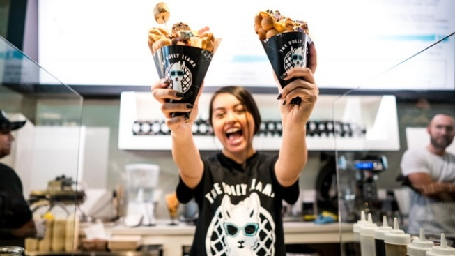 Discover Waffle Cones from the Future, at Dolly Llama