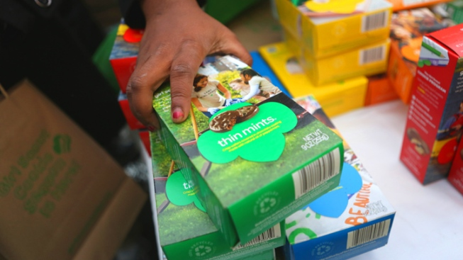 Girl Scout Troop Scammed Out of $200 in Fundraising Money