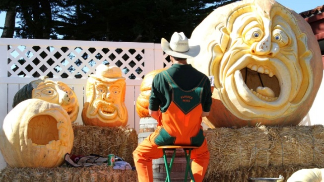 Pumpkin Mania Is Sprouting in Half Moon Bay
