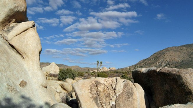 Man Who Died Rock Climbing in Joshua Tree Identified