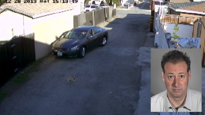 Man Admits to Intentionally Running Over Estranged Wife's Chihuahua