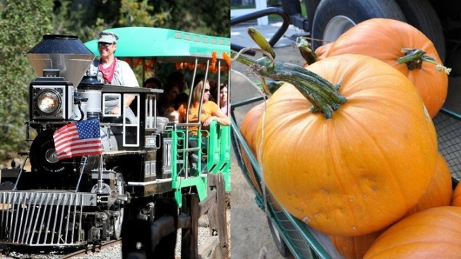 Trains & Pumpkins: It's Fall at Irvine Park Railroad