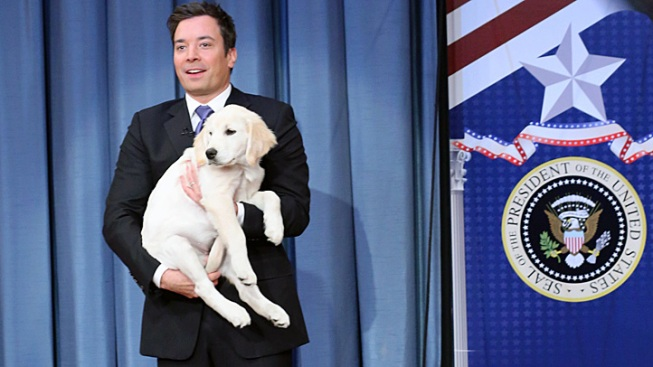 "Romney Clinches the Puppy Vote on ""Fallon"""