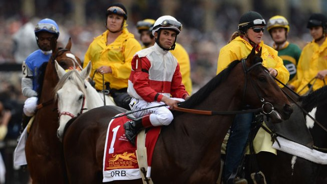 Derby Winner Orb All Set for Belmont Stakes