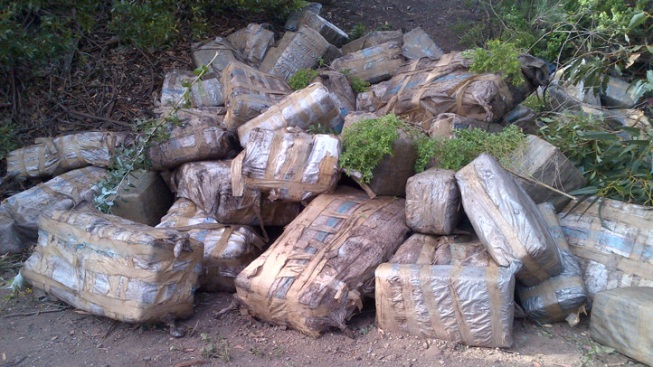 $4M Worth of Marijuana, Smuggling Boat Found on Beach Near Santa Barbara