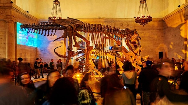 Natural History Museum: First Fridays Begin