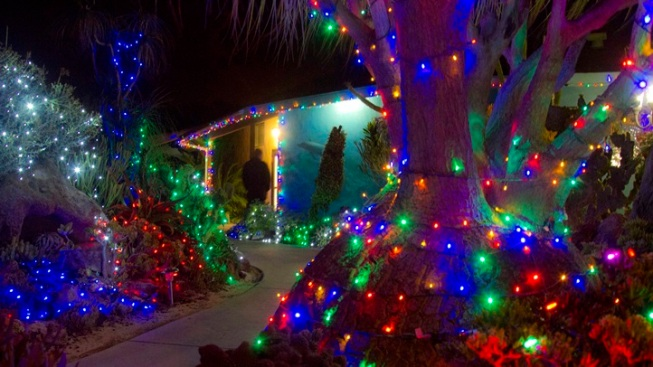 Encinitas Enchantment: Garden of Lights