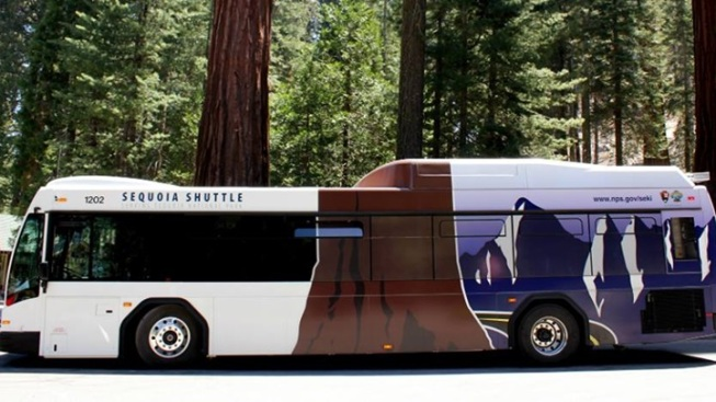 Sequoia Shuttle: On the Road Again