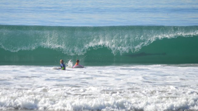 "Two Pint-Sized SoCal Surfers ""Photobombed"" by Possible Shark"
