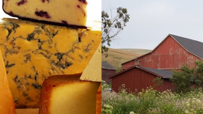 Tasty Marin-Sonoma Sojourn: The Cheese Trail