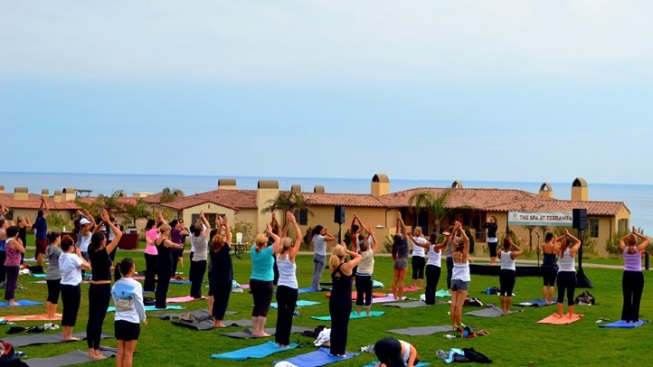 Mega Yoga Gathering (LA's Biggest + Views)