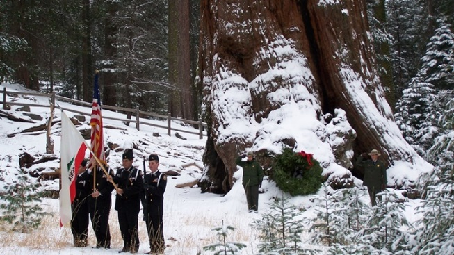 General Grant Ceremony: Trek to the Tree