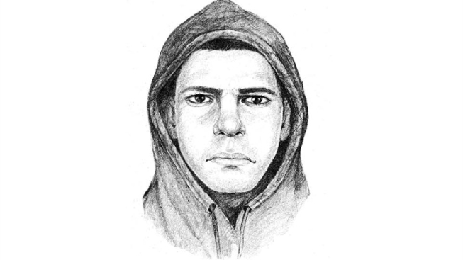 Sketch of UCLA Attacker Released
