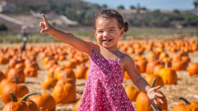 Underwood's Fall Fest Is an Adorable Autumn Favorite
