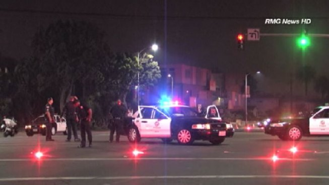 Anonymous Tip Leads to Arrest of Driver in Fatal Venice Hit-and-Run