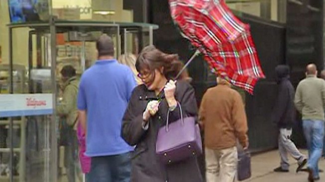 Gusty Winds Bring Power Outages, Downed Trees