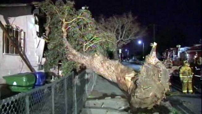 Wild Winds Whip Through Southern California