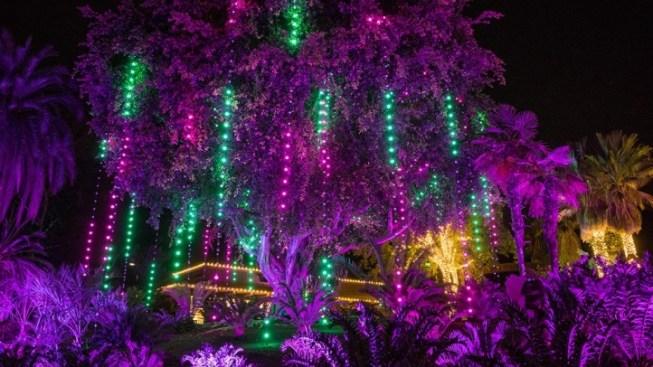 Weekend: LA Zoo Lights Begins