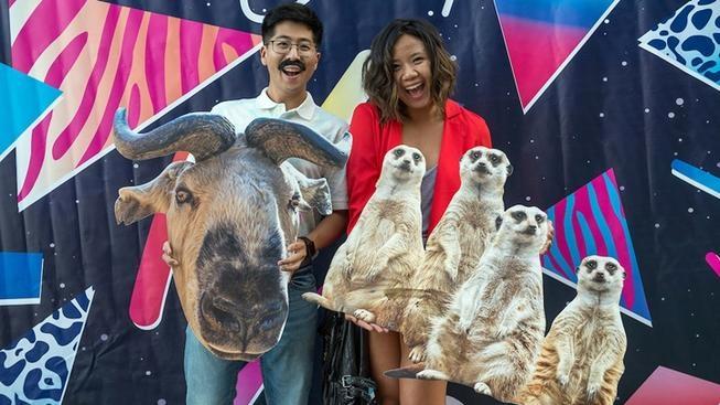 This Week: 'Roaring Nights' Begin at LA Zoo