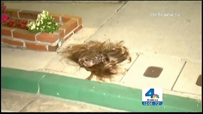 Someone made off with wigs worth $2,000 from an Orange strip mall. Annette Arreola reports for the NBC4 News at Noon on Tuesday, Feb. 26, 2013.