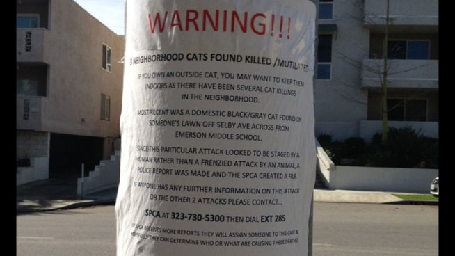 Pet Owners Warned After Cats Found Killed