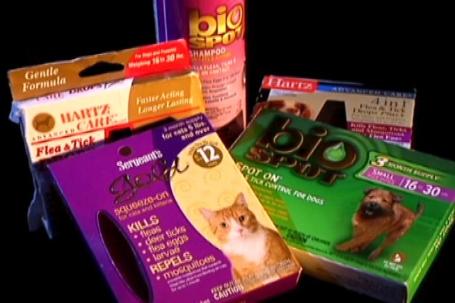 Pet Product Investigation