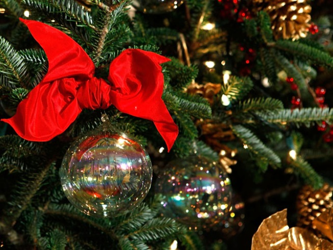 Tonight: Queen Mary Tree Lighting