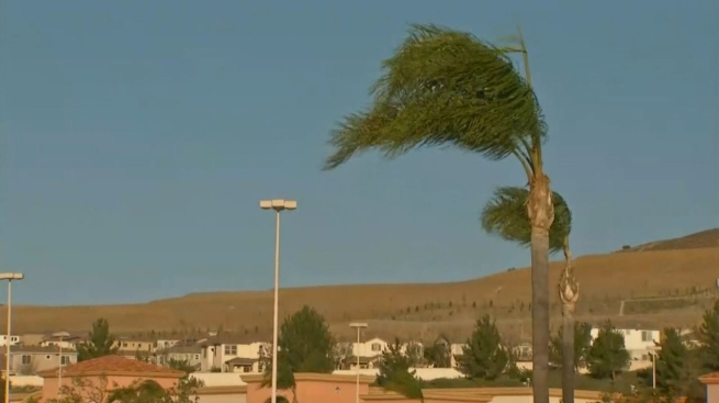 Wind Knocks Out Power for Thousands in San Fernando Valley