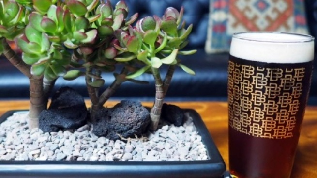 Snip, Sip at Boomtown Brewery's Bonsai & Beer
