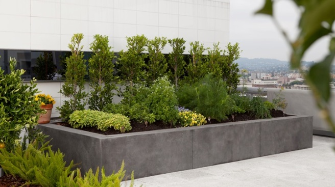 Ritz-Carlton LA: Spa Meets Rooftop Garden