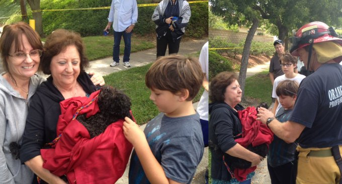 Dog, Sparky, Rescued From Storm Drain Where it Hid From Coyote