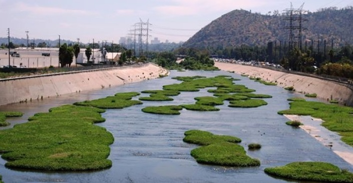 LA River First: Fly-Fishing Derby