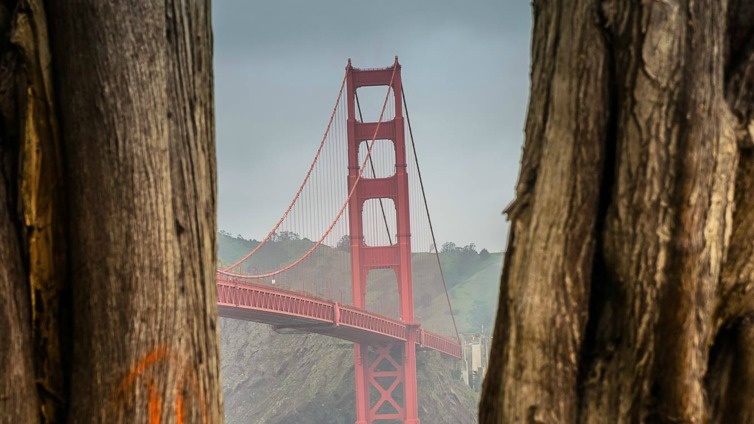 Iconic Golden Gate Bridge Immortalized Through Photographs