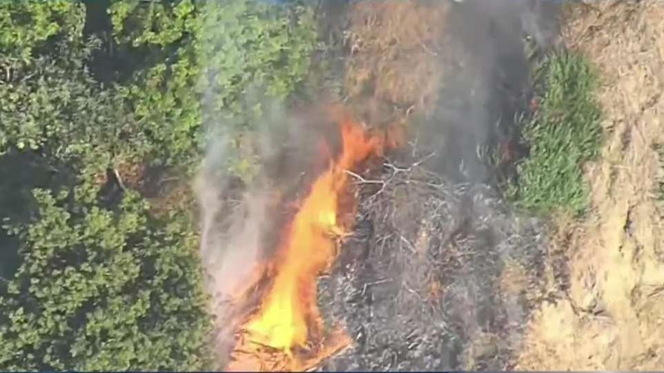 Man in Custody After Brush Fire in San Pedro