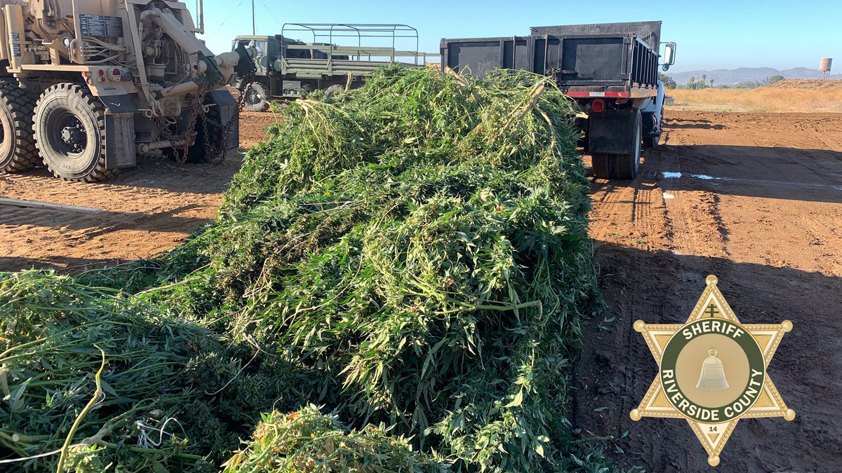 Guns and 14.9 Tons of Pot Seized in Riverside County Raids