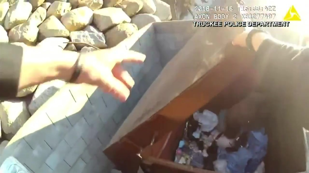 A sergeant frees a bear trapped Nov. 16, 2018 in a trash bin in Truckee, California.