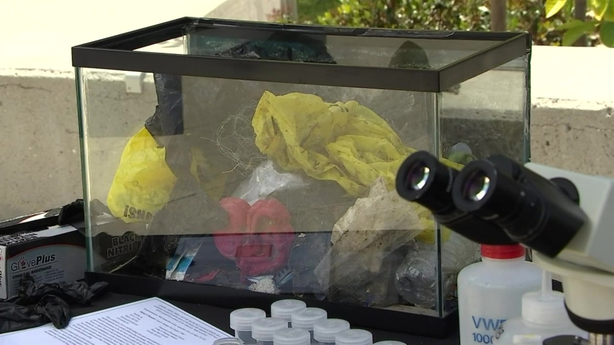 UCI Raises Awareness of Harmful Plastic on Coral Reefs