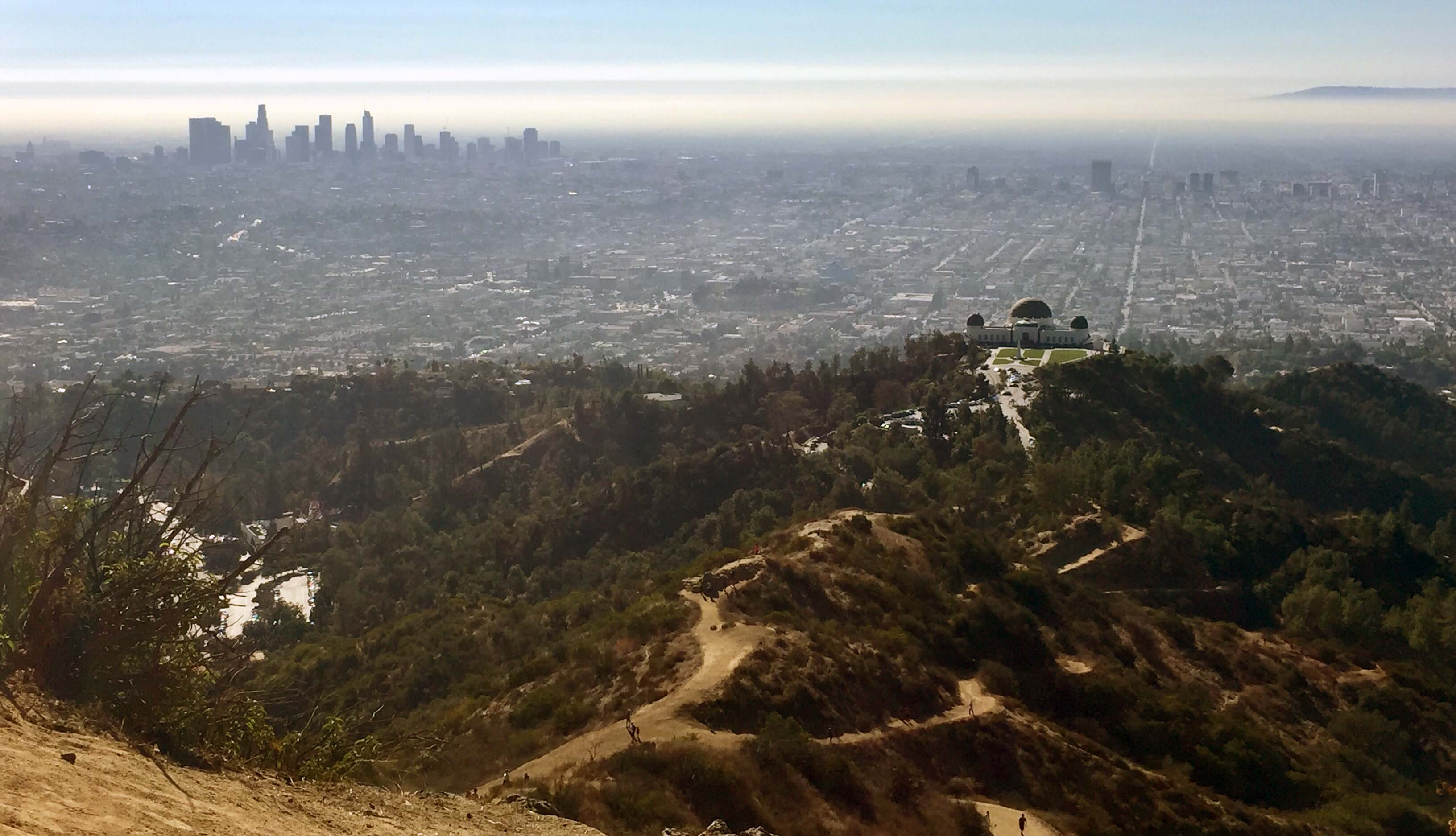 Map: There's a New Way to Wander Around Griffith Park on Weekends